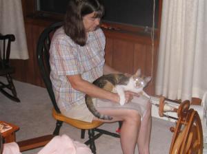 cat spinning