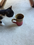 Pippi and coffee