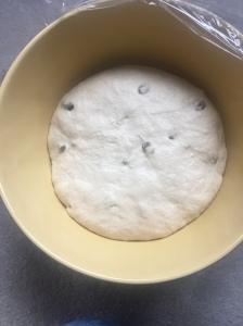 sourdough raisin bread rising