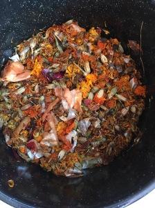 marigold-in-dye-pot