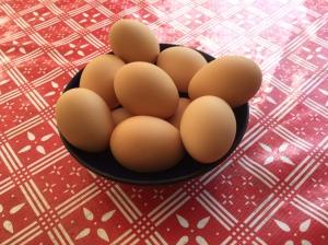 eggs june 2017